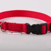 2 cm széles JUICY PUPPY CLICK nyakörv - piros